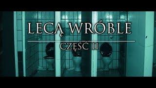 Lecą Wróble cz. 2 - CreepyPasta (PL)