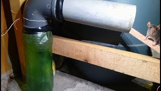 Simple mouse trap that works (REALLY) | How to make a mouse trap | Homemade Rat Trap