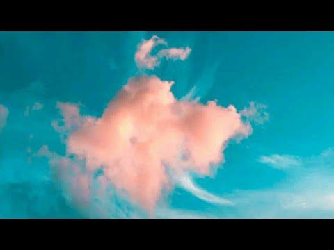 Animal sex  by Bajrang Suthar ke videos