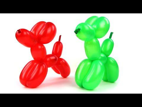 Xxx Mp4 Fun Balloon Dogs How To Make Super Cute Balloon Dog 3gp Sex