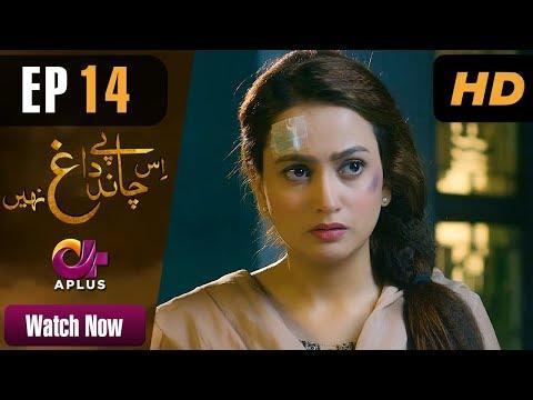 Drama | Is Chand Pe Dagh Nahin - Episode 14 | Aplus Dramas | Zarnish Khan, Firdous Jamal, Amna Malik