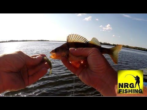 способы ловли рыбы по сезонам