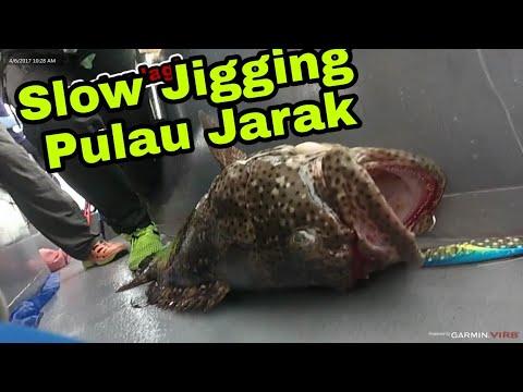 Trip Slow Jigging di Pulau Jarak-Memburu Boron