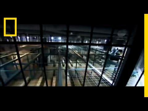 Xxx Mp4 Surviving Prison National Geographic 3gp Sex