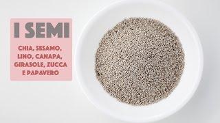 I SEMI (Girasole. chia, zucca, canapa, lino) * Proprietà e benefici *