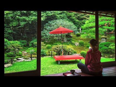 How to Enjoy a Rainy Day in Japan