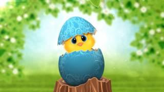 Bluffton Sun City Hilton Head Happy Easter Wishes Video