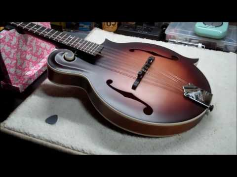 The Loar LM-310 Mandolin Review - Perfect for Guitarists/Beginners/Budget Players
