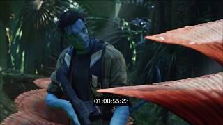 Avatar (Forest Scene) - Music by Rekha Raveenderen