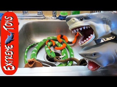 The Snakes Return Toy Sharks Save Boys from the Toy Snake Invasion.