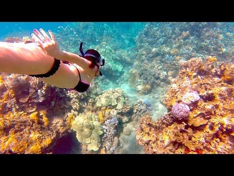 Xxx Mp4 GoPro Amazing Hawaii Honeymoon In Maui 3gp Sex