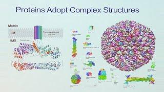 Saturday Science at Scripps Research: Luke Wiseman