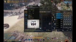 Black Desert Online Ninja Skill Build
