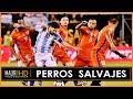 Download Video Download Selección Chilena / Perros Salvajes / Defensive Activity 3GP MP4 FLV