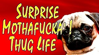 Surprise Mothafucka! - Thug Life Compilation (The Very Best)