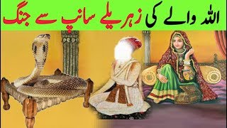 Allah wala Shadi Ki Pehli Rat aur Zehrila Saanp || Allah k Wali aur Saanp || Sanke And Allah