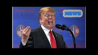 News Donald Trump lashes out at OPEC over oil prices