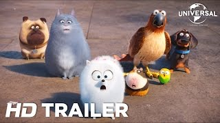 The Secret Life of Pets (2016) Trailer 4 (Universal Pictures)