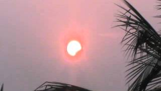 sun grohon