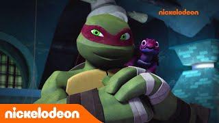 Teenage Mutant Ninja Turtles : les Tortues Ninja | L'entretien d'embauche | Nickelodeon France