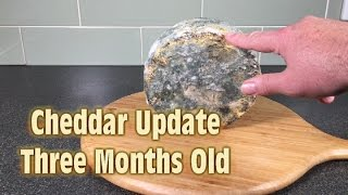 Cheddar Cheese 3 Month Update - A Scary Halloween Surprise!