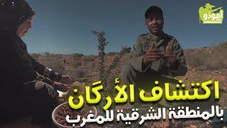 اكتشاف الأرگان بالمنطقة الشرقية للمغرب!