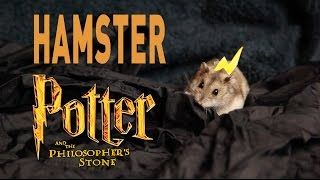 Hamster Potter and the Philosophers Stone