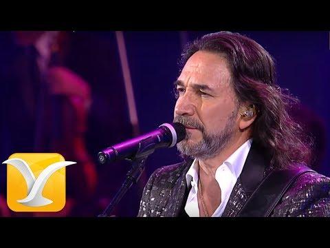 Marco Antonio Solís Festival de Viña del Mar 2016