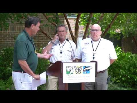 Xxx Mp4 Escaped Jaguar Press Conference At Audubon Zoo 3gp Sex