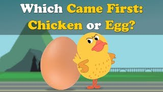 Which Came First : Chicken or Egg? | #aumsum