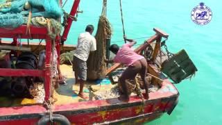 Fishery Short Film: Government of Odisha Initiative