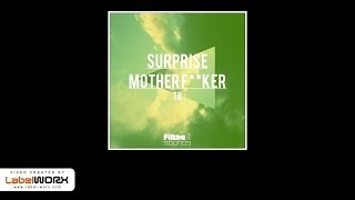 TB - Surprise Motherfucker (Original Mix)