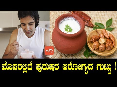Xxx Mp4 ಮೊಸರಲ್ಲಿದೆ ಪುರುಷರ ಆರೋಗ್ಯದ ಗುಟ್ಟು Curd Benefits For Men In Kannada YOYO TV Kannada 3gp Sex