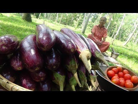 Xxx Mp4 Eggplant Recipe ❤ Cooking Eggplant Brinjal Masala Curry In My Village By Grandma Village Life 3gp Sex