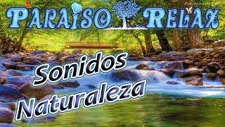 SONIDOS DEL RIO, SONIDOS DE LA NATURALEZA RELAJANTES PARA ESTUDIAR, TRABAJAR, DORMIR, NATURE