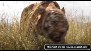 দ্যা জঙ্গল বুক অসাধারণ এ্যানিমেশন মুভি- the jungle book - movie 2016