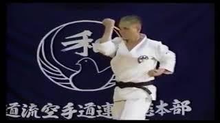 Kihon Wado Ryu