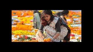Lal Sobuj | Bangla New Rap Song | Alif Hossain Emon | Mehedi Khan Anik