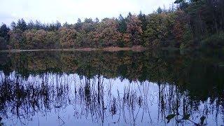 Einmal um den Silbersee bei Aurich Waldsee Tannenhausen Ostfriesland Niedersachsen