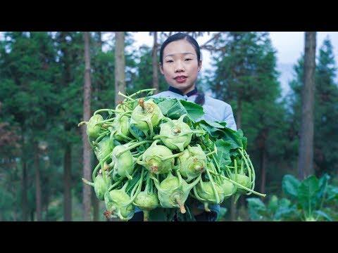 """山里種植了一大片【苤藍】大頭菜,我是這樣做的,� �們呢?""""Kohlrabi""""Brassica oleracea Gongylodes Group Chinese Food 野小妹wild girl"""