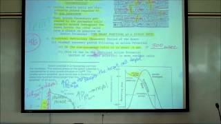 CARDIAC PHYSIOLOGY; PART 2 by Professor Fink.wmv