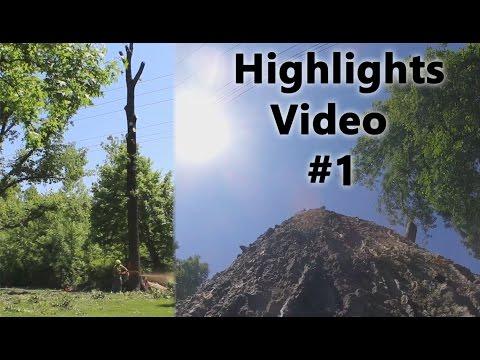 Tree service Highlights video #1, 5/30/2016 - 6/18/2016