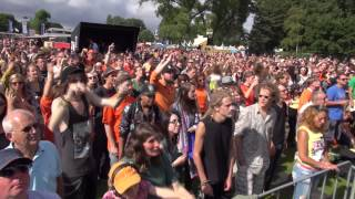 Friends of the Family The Line en Gone Away (live parkpop 2014)