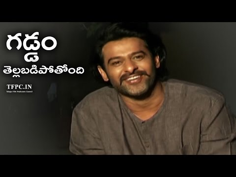 Prabhas Funny Comments On His Marriage | TFPC