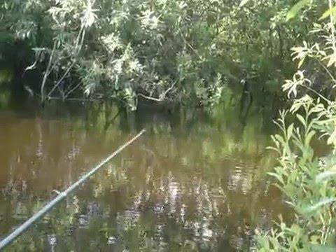 рыбалка в метелева тюмень