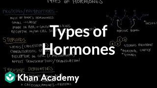 Types of hormones | Endocrine system physiology | NCLEX-RN | Khan Academy