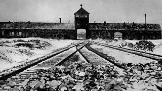 Holocaust and genocide survivors: Forgive or forget? | Guardian Docs