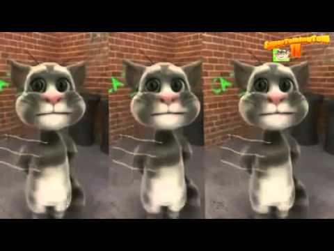Entarisi Dım Dım Yar Konuşan Kedi Tom Versiyonu D