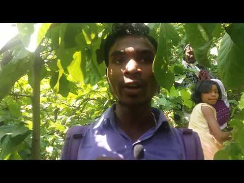 Xxx Mp4 In Santali Luguburu Public Interview 1 3gp Sex
