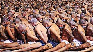 """اخطر سجن بالعالم سجن """"الدولفين الأسود"""" الذي لم يخرج منه اي سجين لحد الان..!!"""
